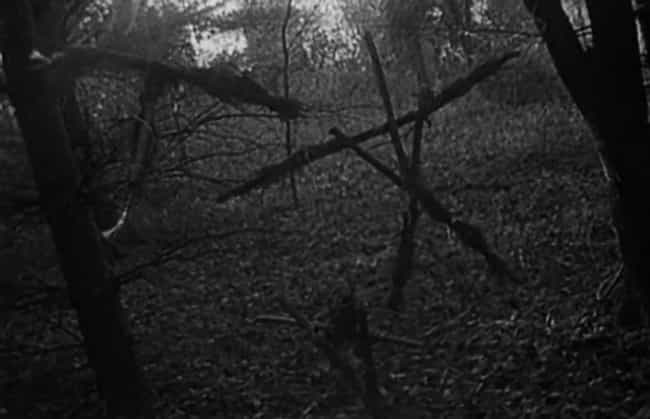 Taco Was The Actors' Safet... is listed (or ranked) 2 on the list 15 Awesome Facts About the Original Blair Witch Project
