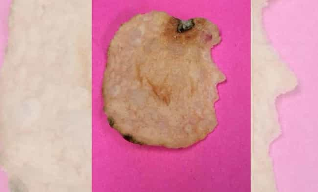 Donald Trump Potato Chip is listed (or ranked) 4 on the list Idiots Can't Stop Freaking Out About Chips That Look Like Famous Things