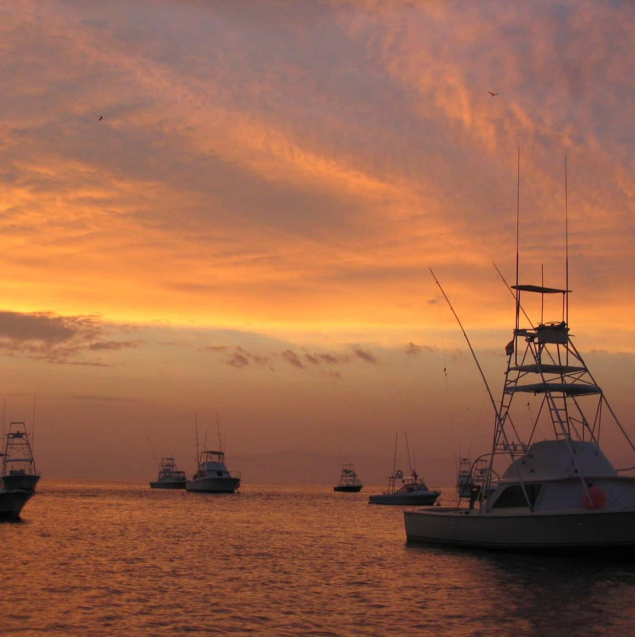 Red Skies at Night, Sailor's D is listed (or ranked) 2 on the list 15 Old Wives' Tales That Are Completely True