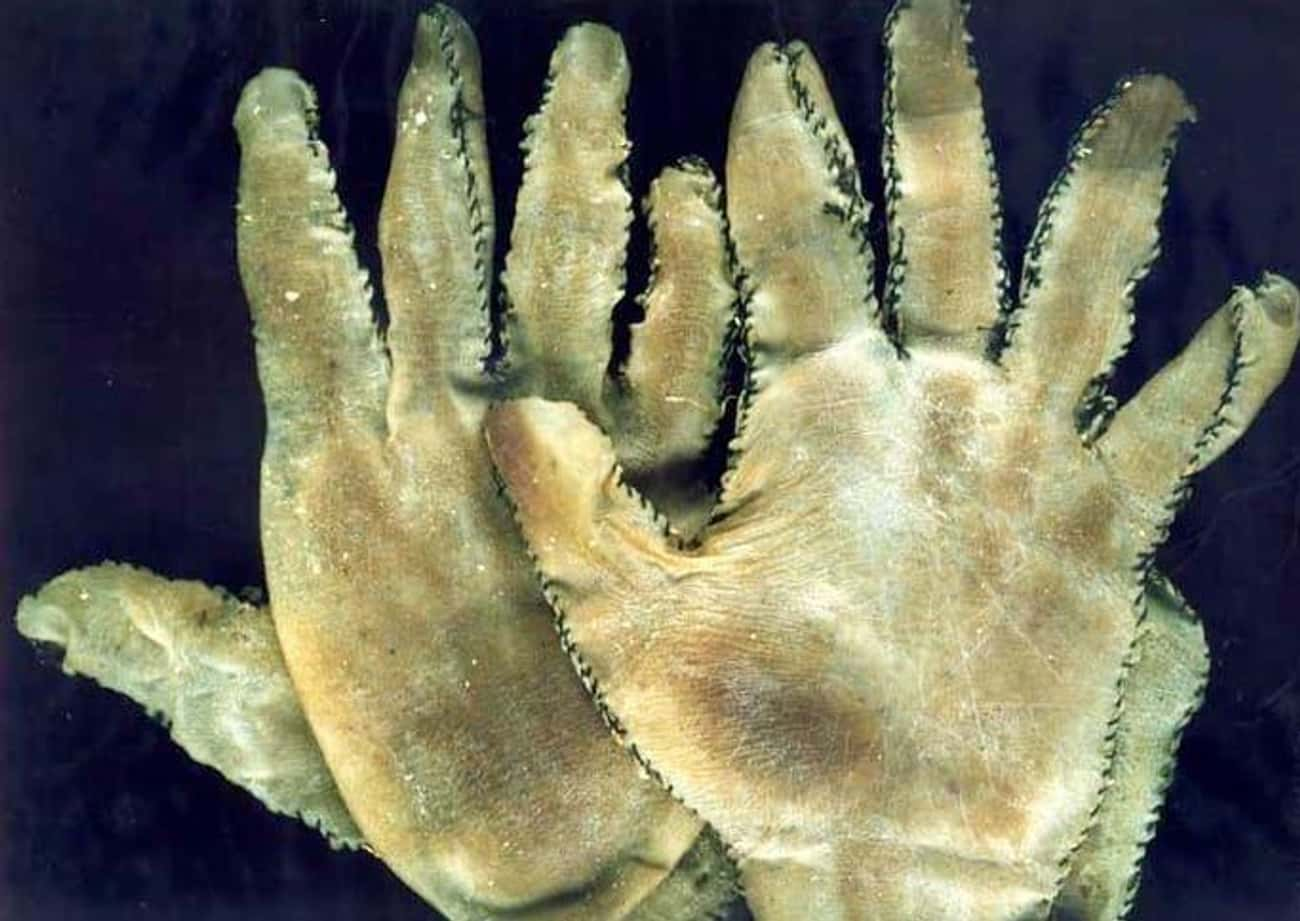 These Handy Gloves is listed (or ranked) 4 on the list 10 Random Objects That Were Actually Made Out of Human Skin