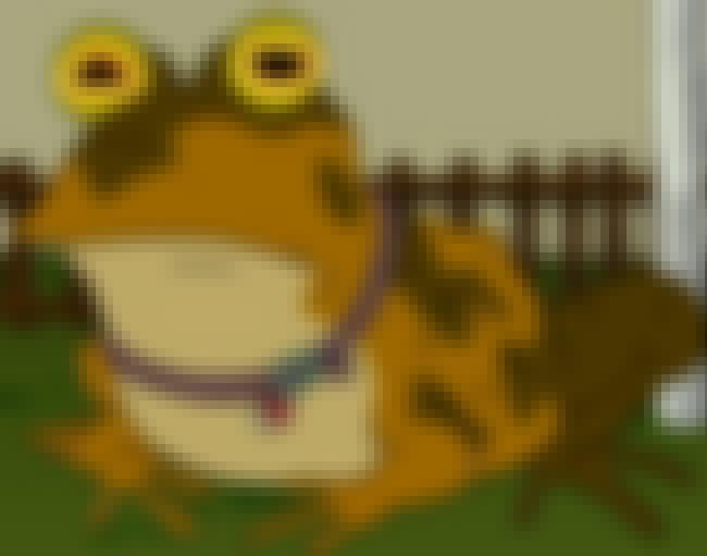Hypnotoad Evolved From the Toa... is listed (or ranked) 7 on the list 15 Insane Futurama Fan Theories That Are Crazy Enough to Be True
