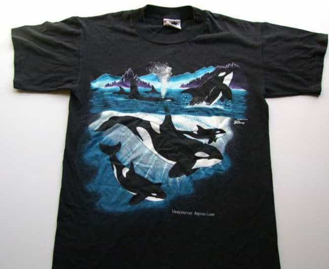 Orca Shirts is listed (or ranked) 4 on the list T-Shirts You Regret Wearing as a Kid in the '90s