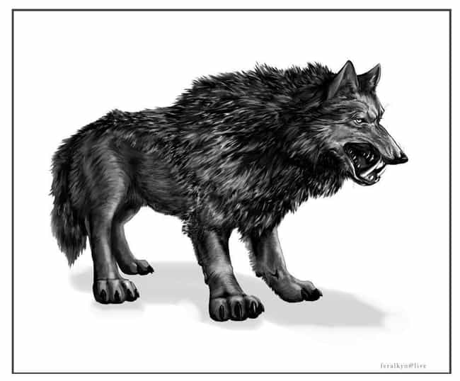 "A Prehistoric ""Saberwolf&#... is listed (or ranked) 3 on the list Creepy Legends and Stories from Alaska"