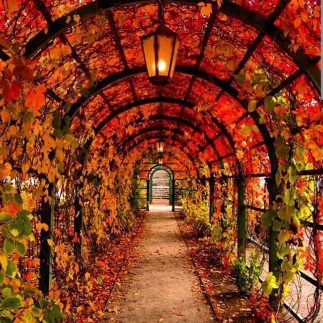 Tallinn, Estonia is listed (or ranked) 1 on the list 26 Gorgeous Photos of What Fall Looks Like Around the World