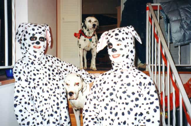 Spot On is listed (or ranked) 4 on the list Incredibly Awkward Family Photos: Halloween Edition
