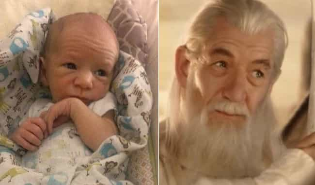 Baby Gandalf is listed (or ranked) 4 on the list 23 Babies Who Totally Look Like Famous Celebrities