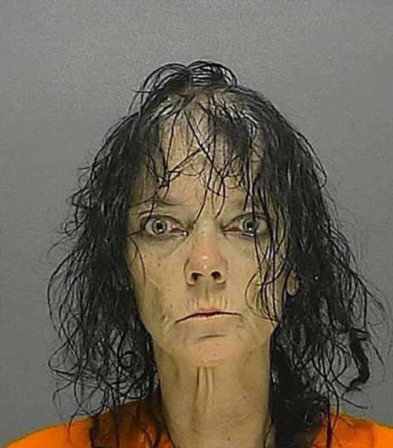 Modern Day Medusa is listed (or ranked) 2 on the list 28 Hilarious Florida Mugshots