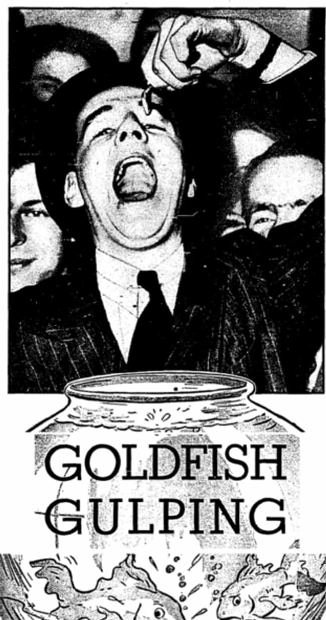 Swallowing Goldfish is listed (or ranked) 2 on the list 15 Popular American Fads from the 1920s, '30s, and '40s