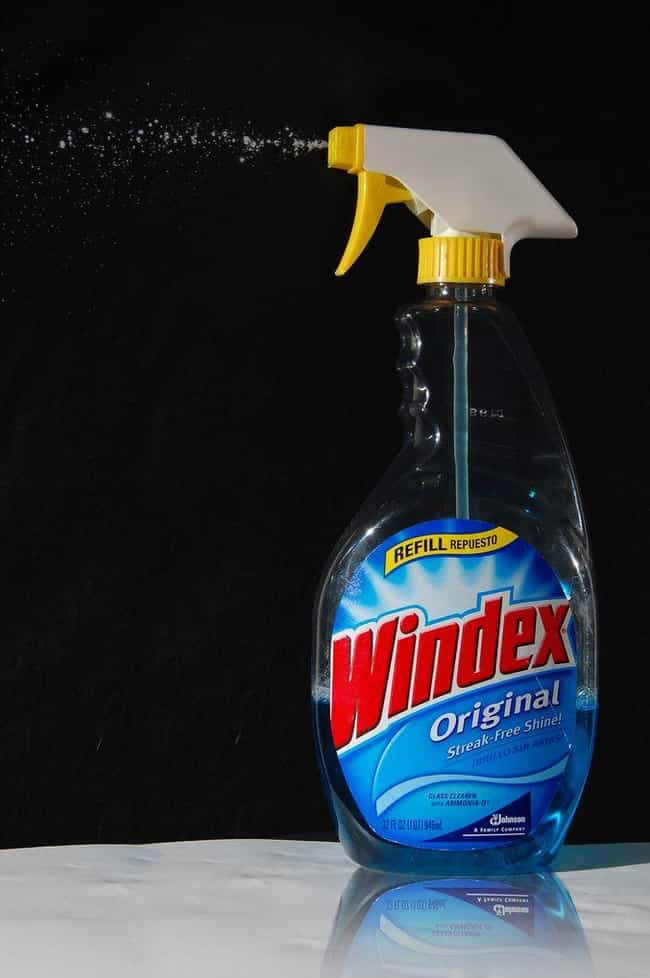 Roommate Spits and Pours Winde... is listed (or ranked) 3 on the list The Worst Roommate Horror Stories of All Time