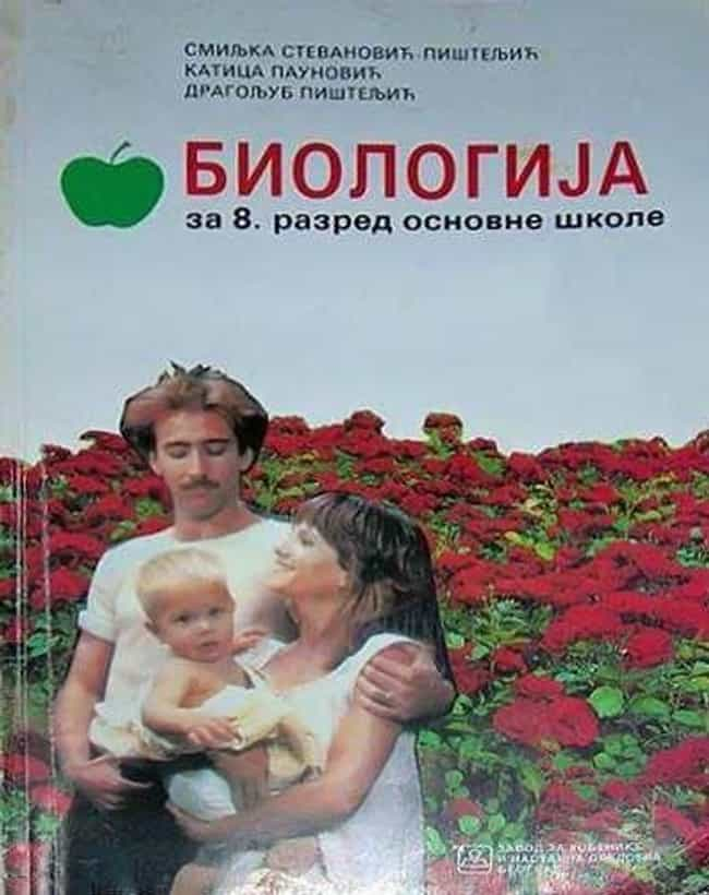 This Textbook Decided It'd... is listed (or ranked) 4 on the list The Weirdest Book Covers Ever Published