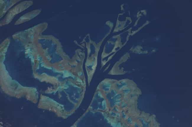 The Great Barrier Reef ... is listed (or ranked) 4 on the list The Best Pictures from the ISS