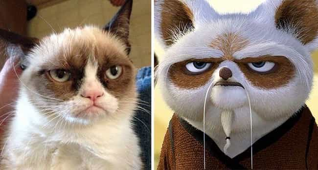 Grumpy Cat And Master Sh... is listed (or ranked) 4 on the list 19 Celebrities and Their Cartoon Doppelgangers