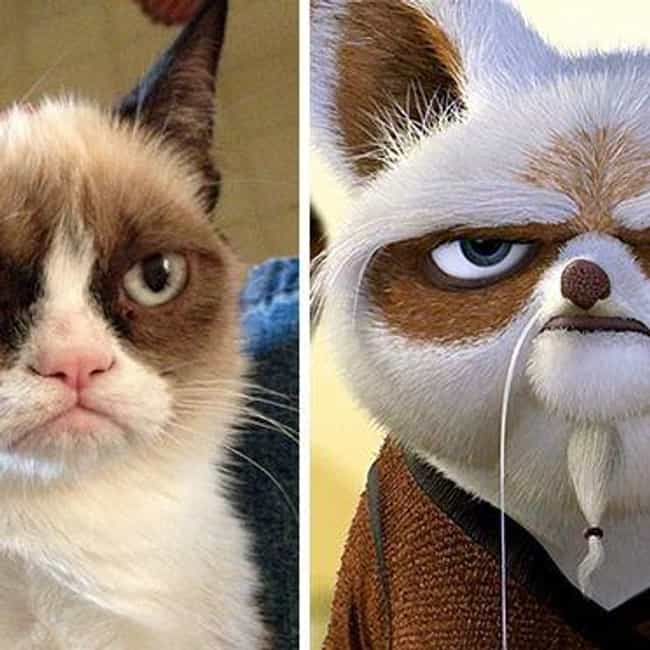 Grumpy Cat and Master Shifu is listed (or ranked) 4 on the list 23 Celebrities and Their Cartoon Doppelgangers