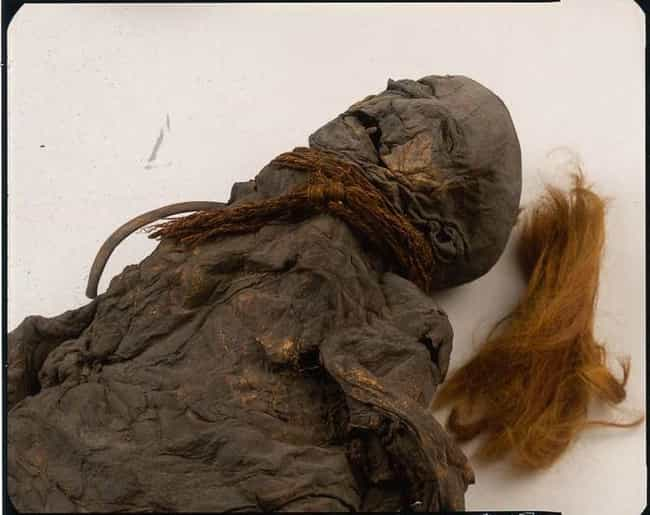 The Majority Of Bog Bodies Sho... is listed (or ranked) 1 on the list 14 Strange and Gruesome Facts About Bog Bodies