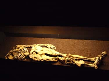 The Dätgen Man Might Have Been An Ancient Zombie