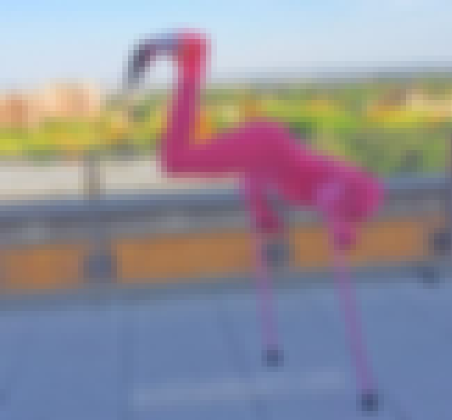 Be A Flamingo is listed (or ranked) 3 on the list These Amputees Are Turning Their Disability Into Clever And Creative Halloween Costumes