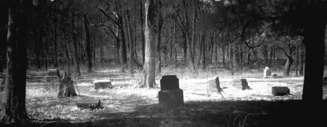 Bachelor's Grove Cemeter... is listed (or ranked) 1 on the list 11 Super Creepy Cemeteries In The US You Can Visit Today