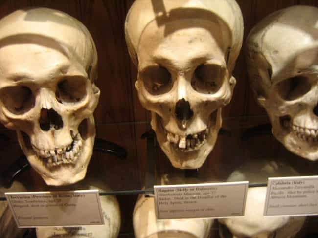 The Mutter Museum In Phi... is listed (or ranked) 1 on the list 16 Museums In America You Won't Believe Actually Exist