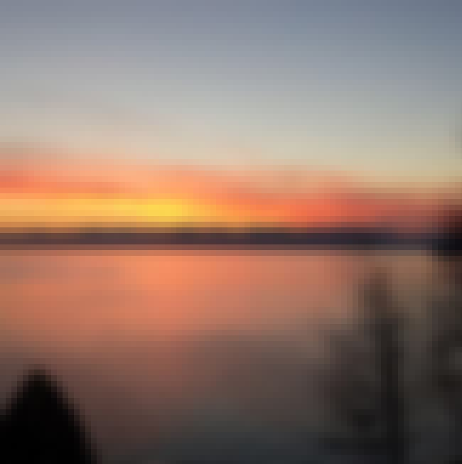 Champ: The Lake Champlain Sea ... is listed (or ranked) 4 on the list 12 Terrifying Ghost Stories And Legends From Vermont