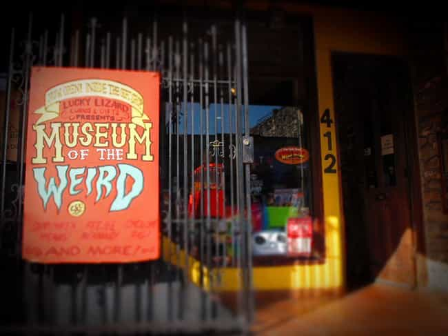 The Museum Of The Weird In Aus... is listed (or ranked) 4 on the list 16 Museums In America You Won't Believe Actually Exist