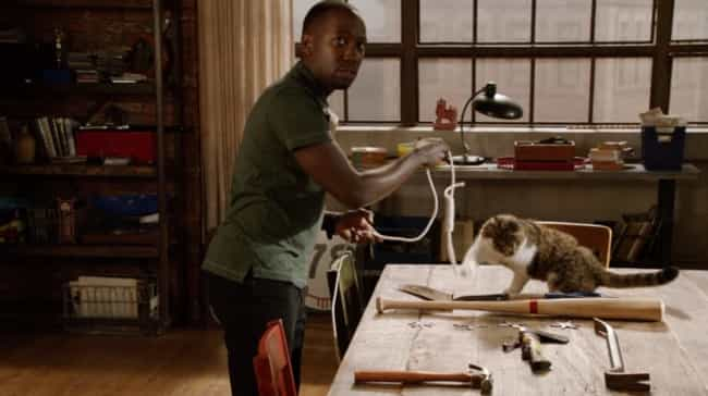 Winston Reminds the Gang They&... is listed (or ranked) 1 on the list 15 Winston and Ferguson Moments on New Girl That Capture Cat Lovers Perfectly