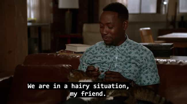 Winston Brushes Ferguson... is listed (or ranked) 4 on the list 15 Winston and Ferguson Moments on New Girl That Capture Cat Lovers Perfectly