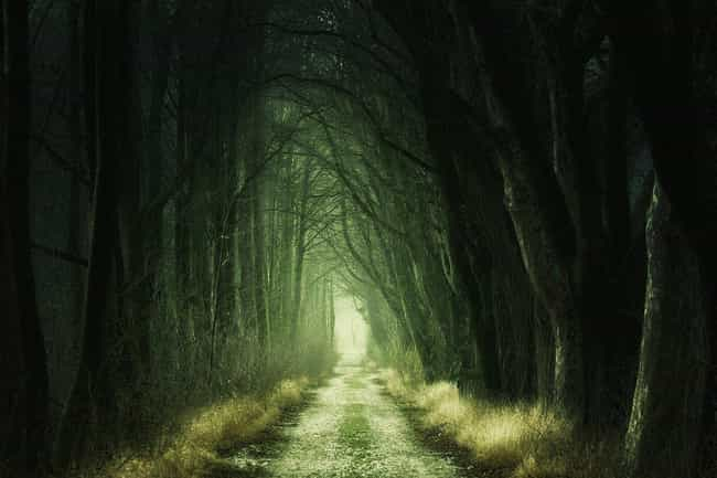 The Black Forest Hauntin... is listed (or ranked) 1 on the list 10 Chilling Stories And Urban Legends That Prove Colorado Is The Creepiest State