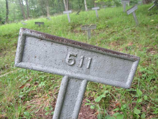Mental Patients Are Buried In ... is listed (or ranked) 4 on the list 14 Hidden And Forgotten Cemeteries Across The Northeast United States