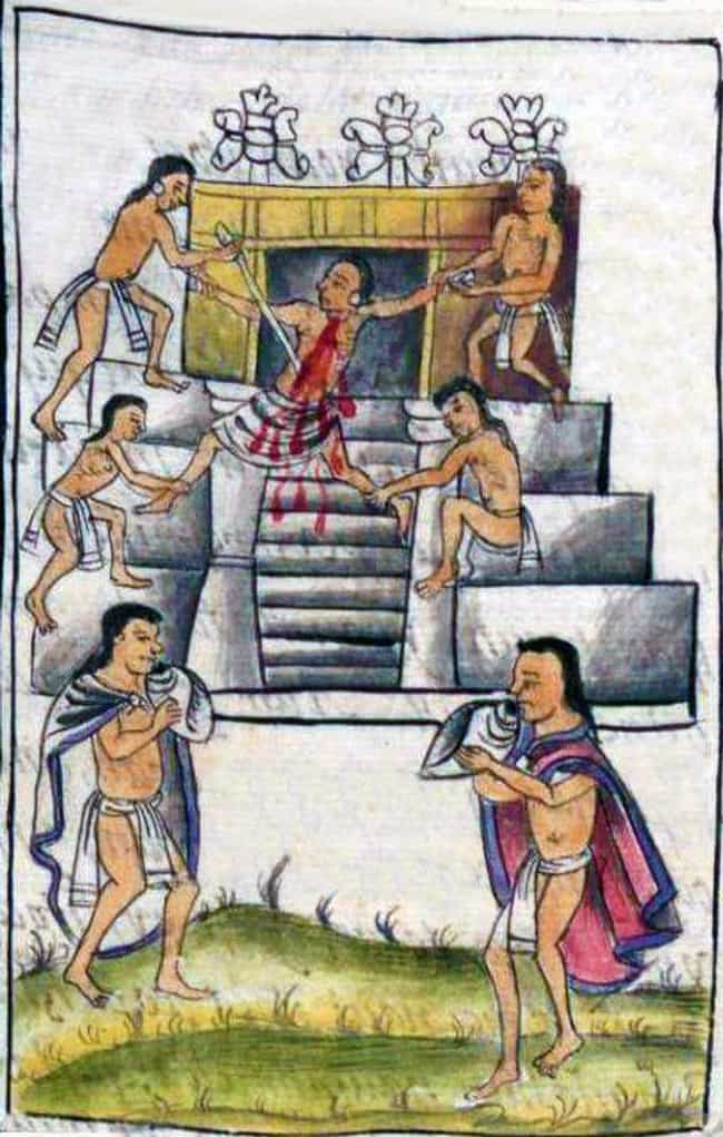 They Stick a Giant Straw... is listed (or ranked) 2 on the list 10 Horrifying Things That Would Happen to You in an Aztec Flaying Ceremony