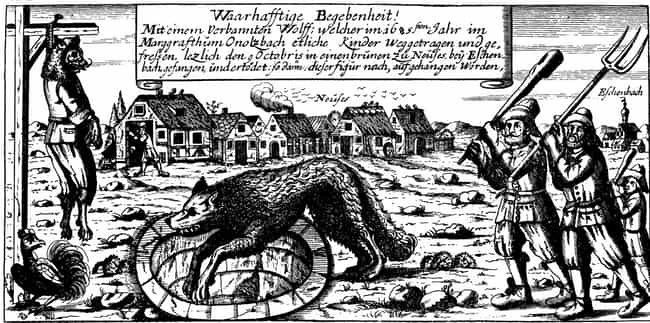 "In 1685 The Mayor Became ""... is listed (or ranked) 3 on the list 11 Historical 'Werewolves' That Terrorized Villages Around The World"