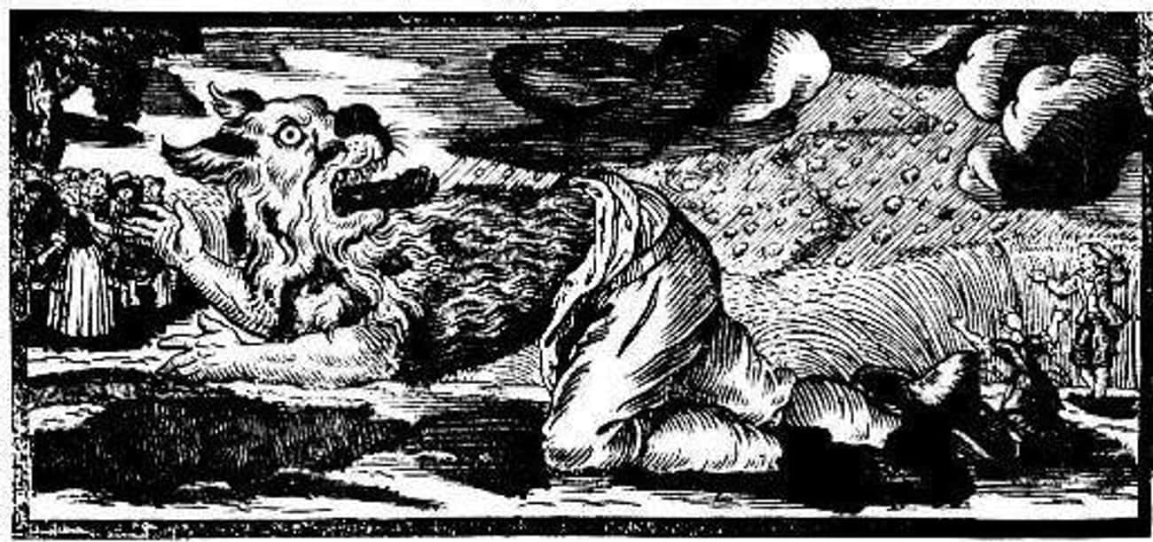 Hans The Werewolf Said He Was  is listed (or ranked) 4 on the list 11 Historical 'Werewolves' That Terrorized Villages Around The World