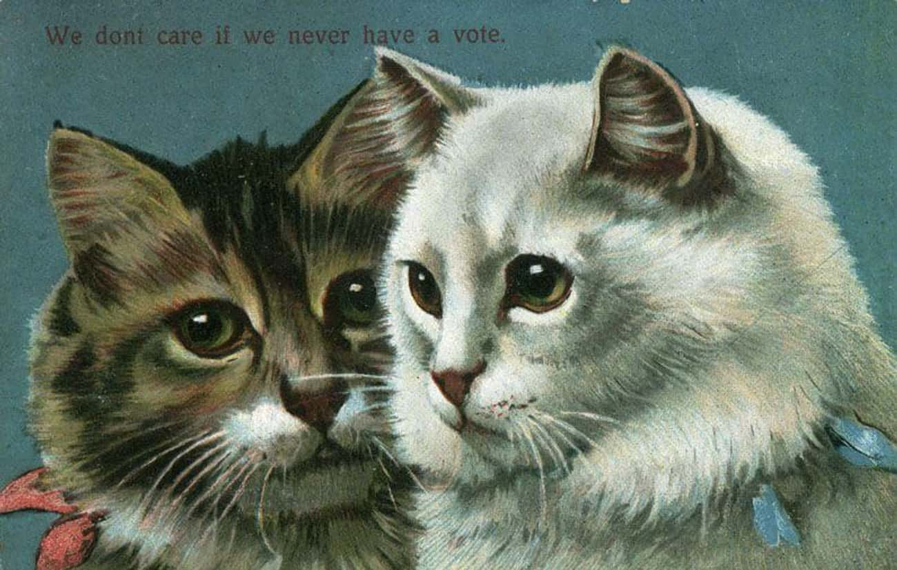 """""""We don't care if we n is listed (or ranked) 2 on the list 31 Women's Suffrage Postcards That Show How Far We've Come"""