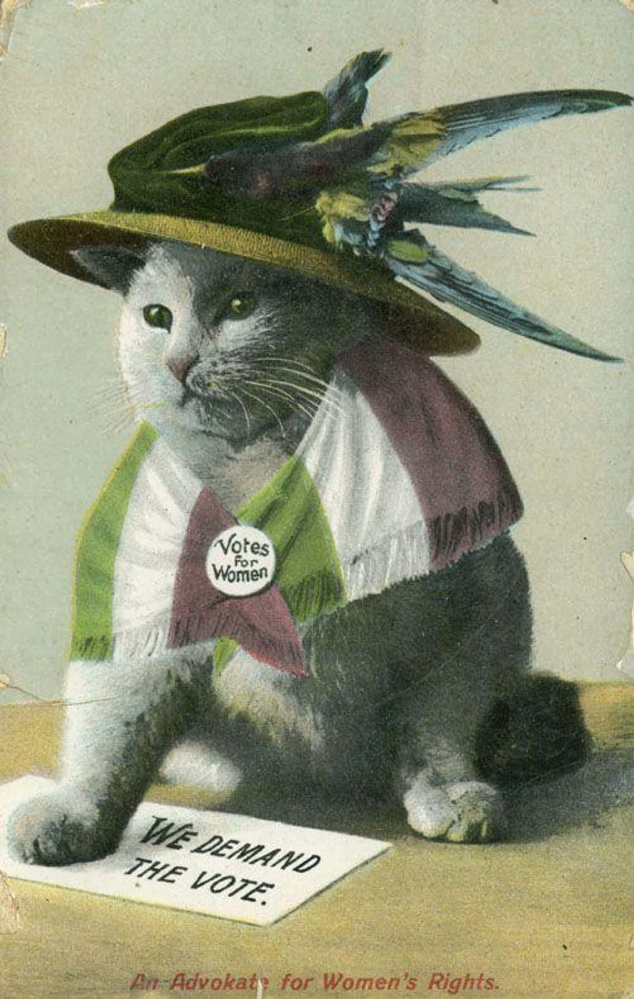 """""""An Advokate for Women&#39 is listed (or ranked) 3 on the list 31 Women's Suffrage Postcards That Show How Far We've Come"""