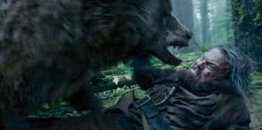 You Get Treated Like a Rag Dol is listed (or ranked) 2 on the list What It's Like To Be Mauled By A Bear