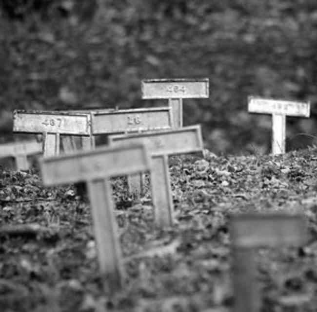 10 Creepy Stories Of Abandoned Insane Asylum Cemeteries