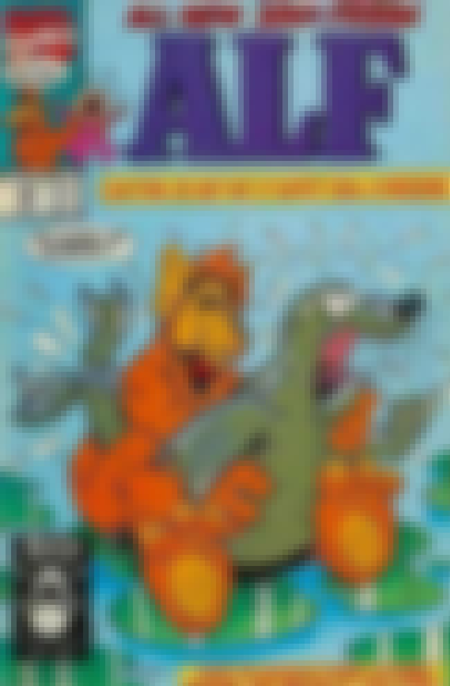 Alf Gone Wild is listed (or ranked) 2 on the list 28 Unintentionally Naughty Comic Book Covers