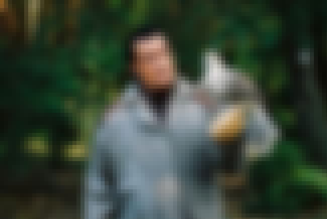 He Tells Dubious Tales About H... is listed (or ranked) 3 on the list 18 Ludicrous Stories About Steven Seagal