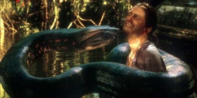 Dying Could Take A Long Time is listed (or ranked) 2 on the list What It's Like To Be Swallowed Whole By An Anaconda