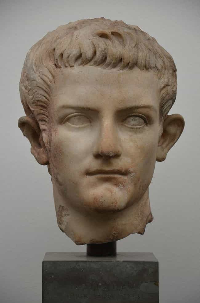 Caligula Had Absolutely Zero P... is listed (or ranked) 1 on the list The Orgy-Filled Life And Times Of Caligula