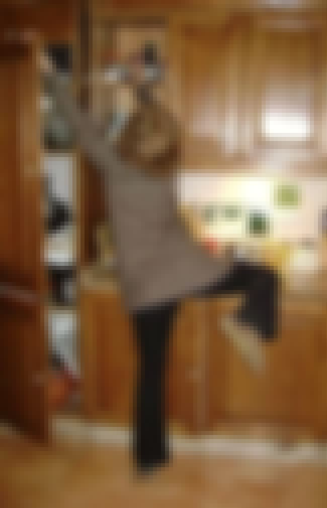 Short People Kitchen Problems is listed (or ranked) 2 on the list Funny Photos Only Short People Can Truly Relate To