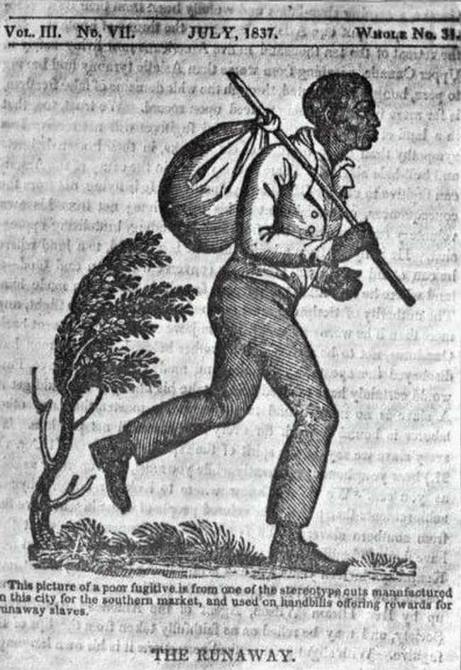A Shockingly Human Depic... is listed (or ranked) 4 on the list 14 Shocking Escaped Slave Ads From the 19th-Century
