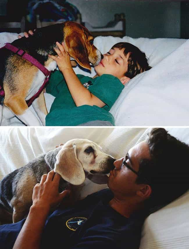 Neverending Kisses is listed (or ranked) 2 on the list Adorable Before-And-After Photos Of Dogs Growing Up With Their Humans