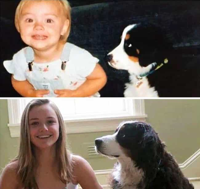 Dogs Always Make You Smi... is listed (or ranked) 4 on the list Adorable Before-And-After Photos Of Dogs Growing Up With Their Humans