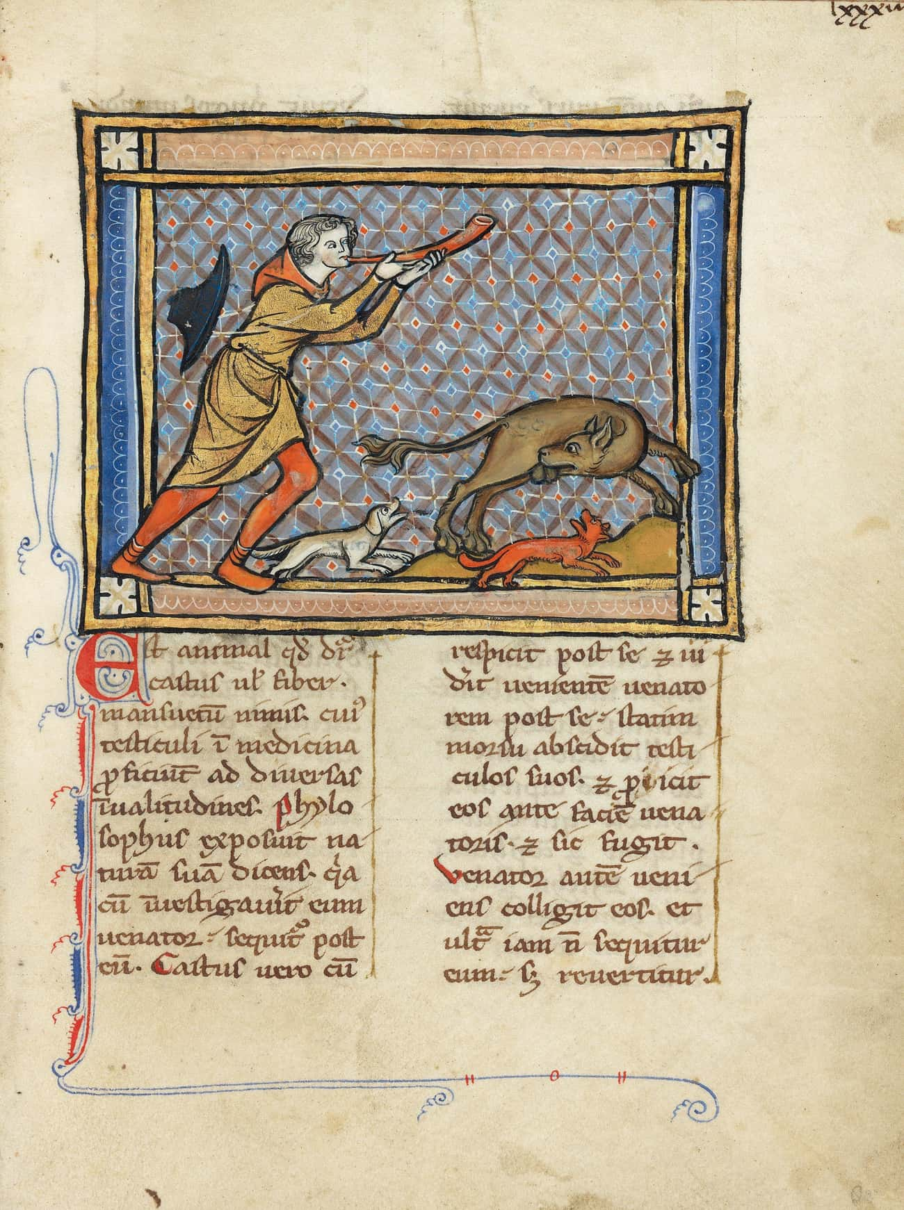 Dogs Attacking A Beaver, Unkno is listed (or ranked) 3 on the list 28 Hilariously Wrong Historical Depictions of Animals