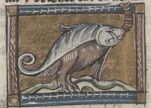 Random Hilariously Wrong Historical Depictions of Animals