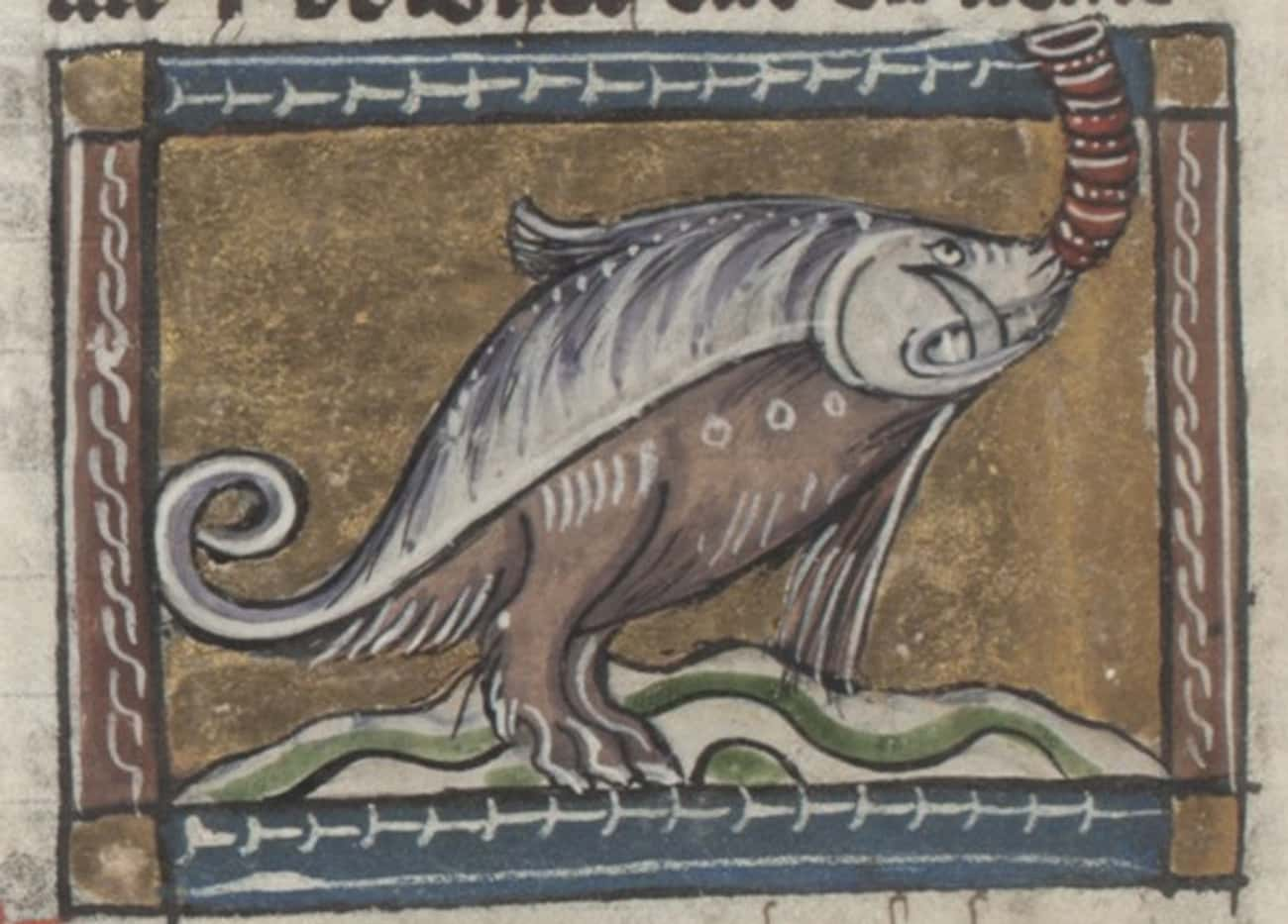 A Hippopotamus, Jacob van Maer is listed (or ranked) 2 on the list 28 Hilariously Wrong Historical Depictions of Animals
