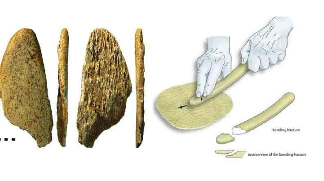 Discovery Of Tools Suggest Hum is listed (or ranked) 14 on the list 15 Bizarre Archaeological Finds That Rewrote History As We Know It