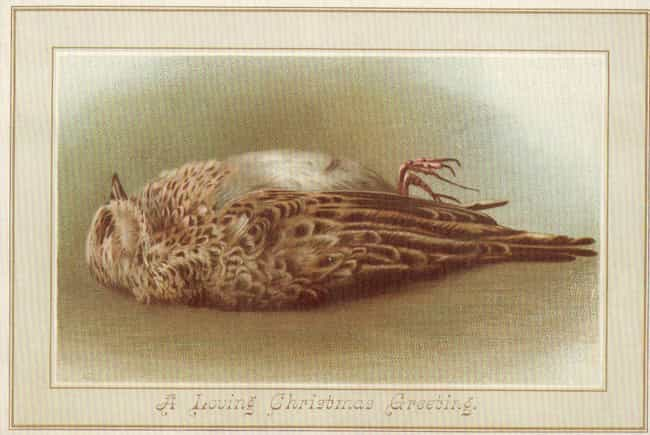 'A Loving Christmas Gree... is listed (or ranked) 2 on the list 25 Bizarre and Disturbing Victorian Christmas Cards