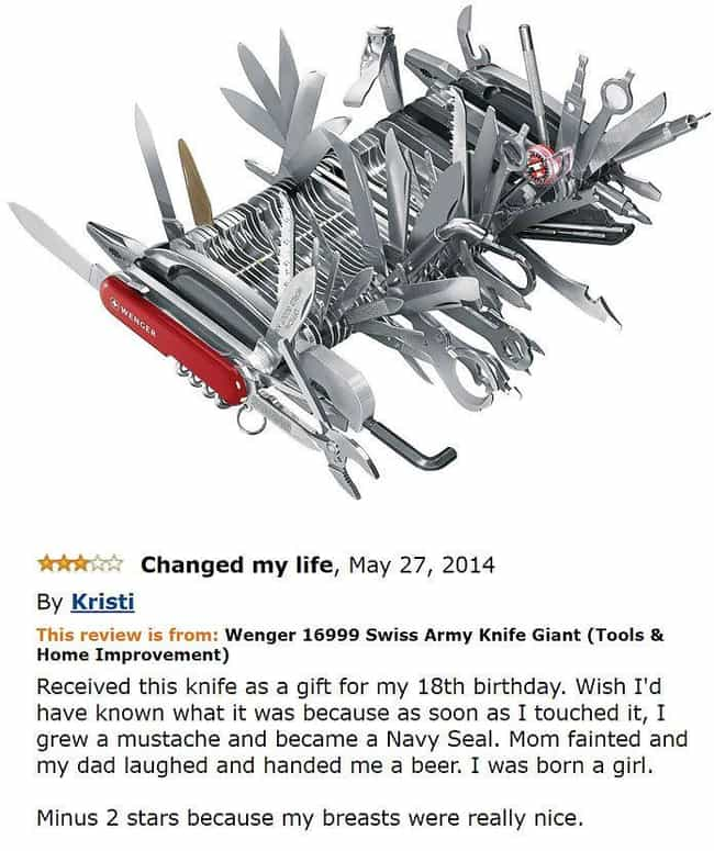 Swiss Cheese is listed (or ranked) 3 on the list The Most Hilarious Amazon Reviews Ever Written