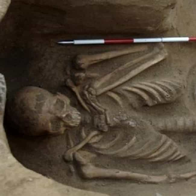 The Etruscan Shackled Skeleton is listed (or ranked) 3 on the list The Weirdest Archaeological Discoveries of 2016